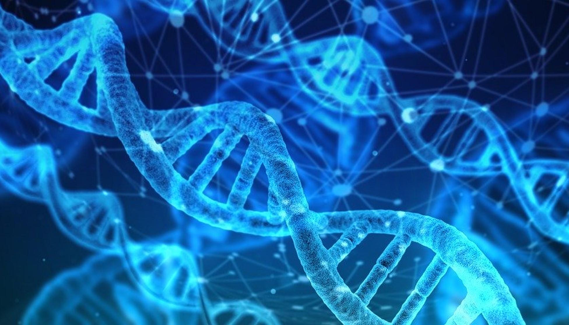 Curso Virtual de Genética en Cáncer Ginecológico